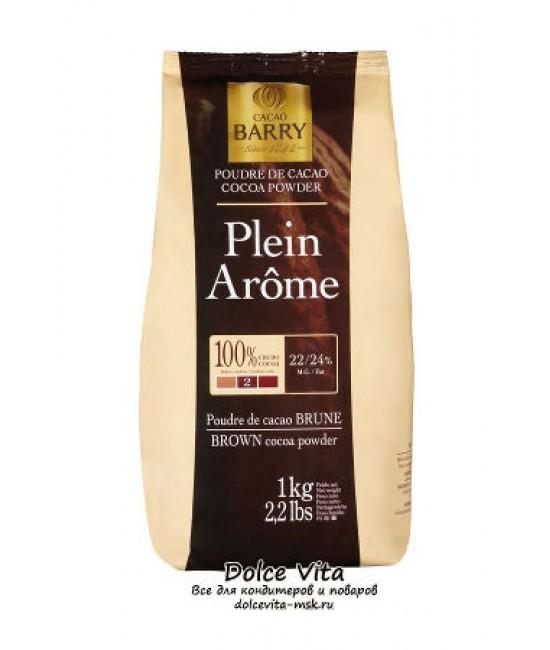 Какао порошок Cacao Barry Plein Arome
